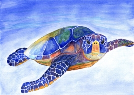 watercolor painting of a green sea turtle with vibrant colors
