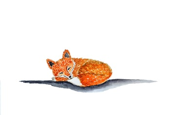 watercolor painting of a little sleeping red fox