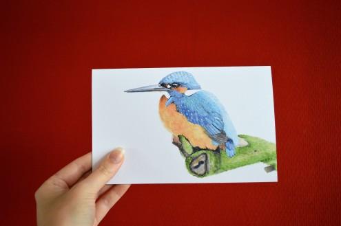 Gevouwen kaart Kingfisher/ IJsvogel, vogel print, tine creates