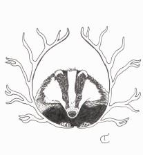 Black and white illustration of a badger