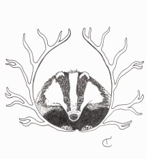 Black and white illustration of a badger